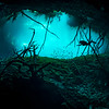 Carwash Cenote I - Quintana Roo, Mexico 2019