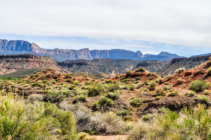 Zion Rugged Landscape