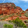 Red Sandstone Formations of Zion Natinal Park