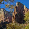 Cathedrals of Zion