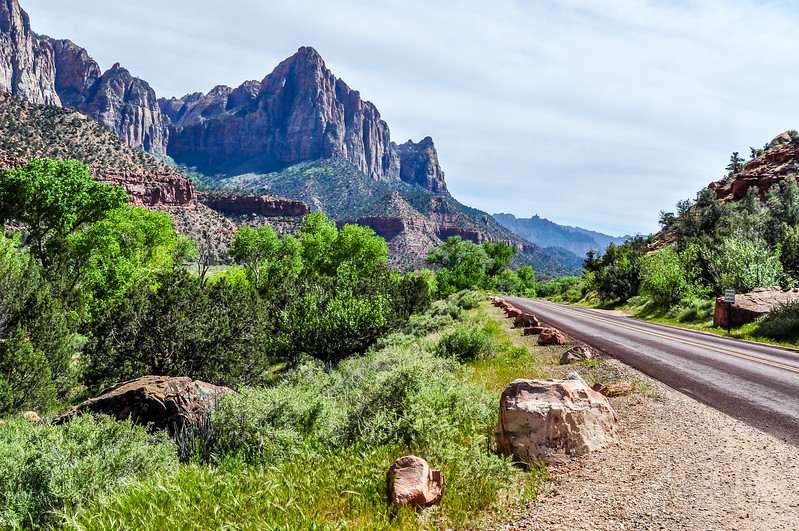 Park Road in Zion