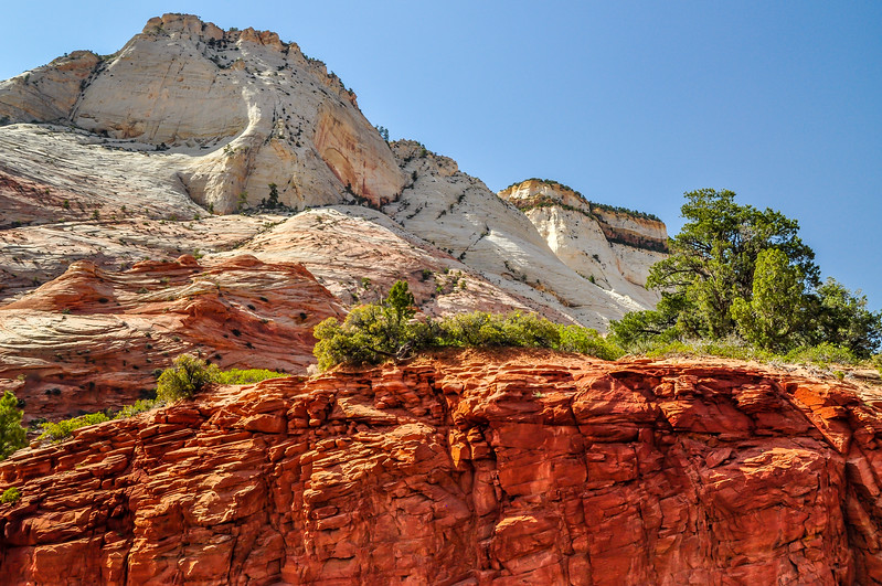 Contrasting Colors of Zion