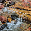 Rushing Waters of Zion National Park