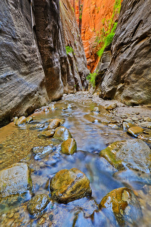 Item# 1918-Exploring Orderville Canyon