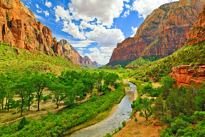 Item# 1690- Zion Canyon