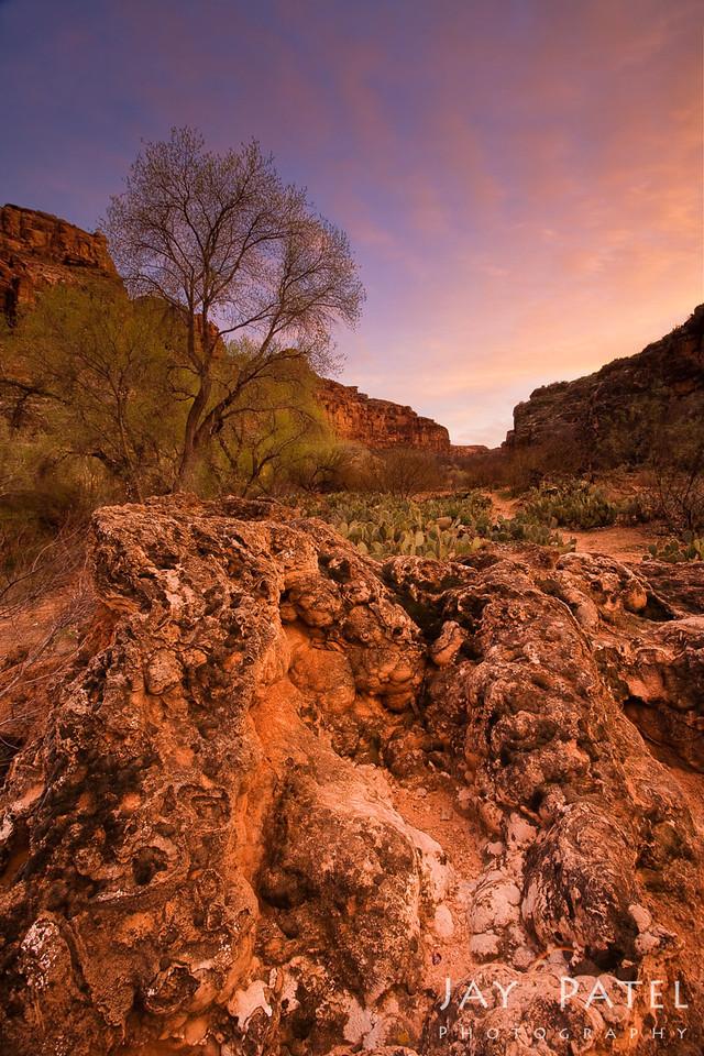Havasu Canyon, Arizona (AZ), USA