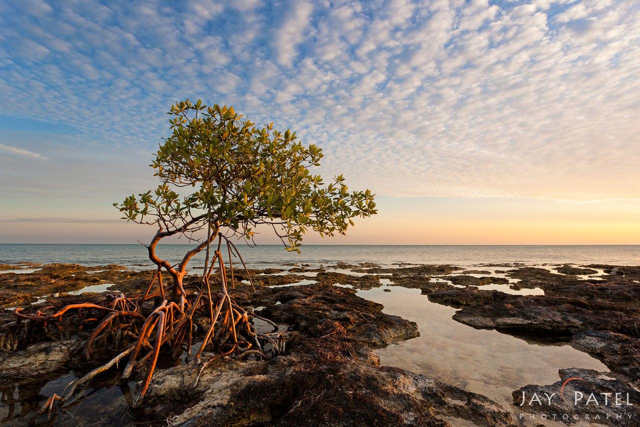 Florida Keys, Florida (FL), USA