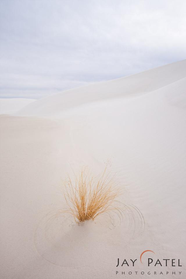 White Sands National Park, New Mexico (NM), USA