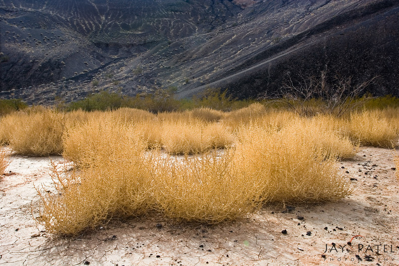 Ubehebe Crater, Death Valley National Park, California (CA), USA