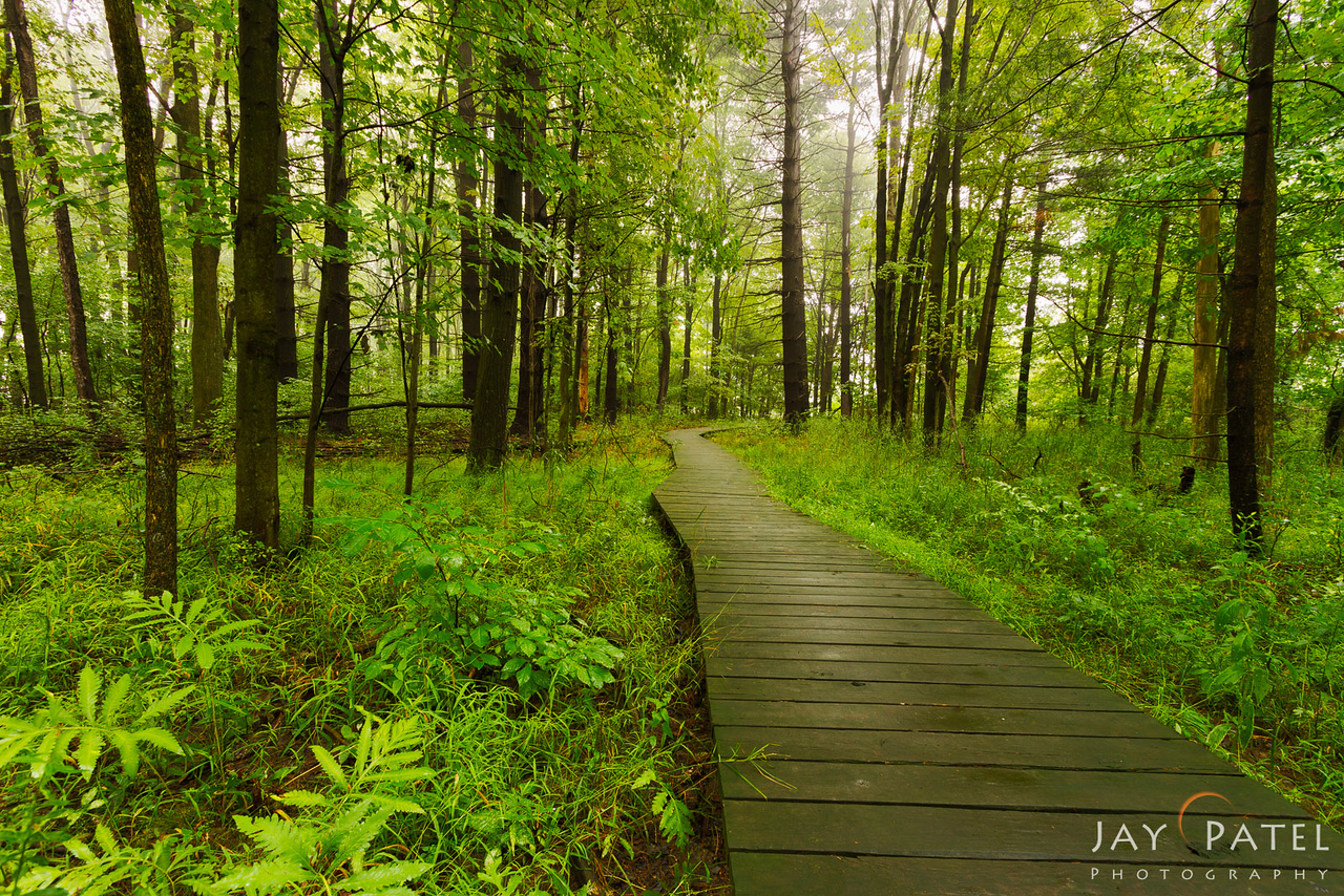 Tinkers Creek State Park, Ohio (OH), USA