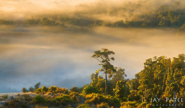 Catlins, New Zeland