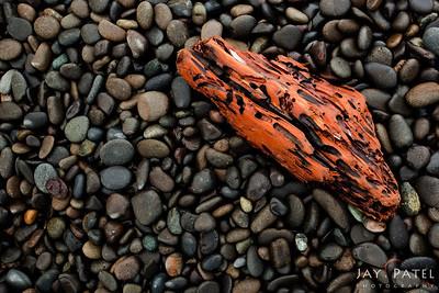 Rialto Beach, Olympic National Park, Washington (WA), USA