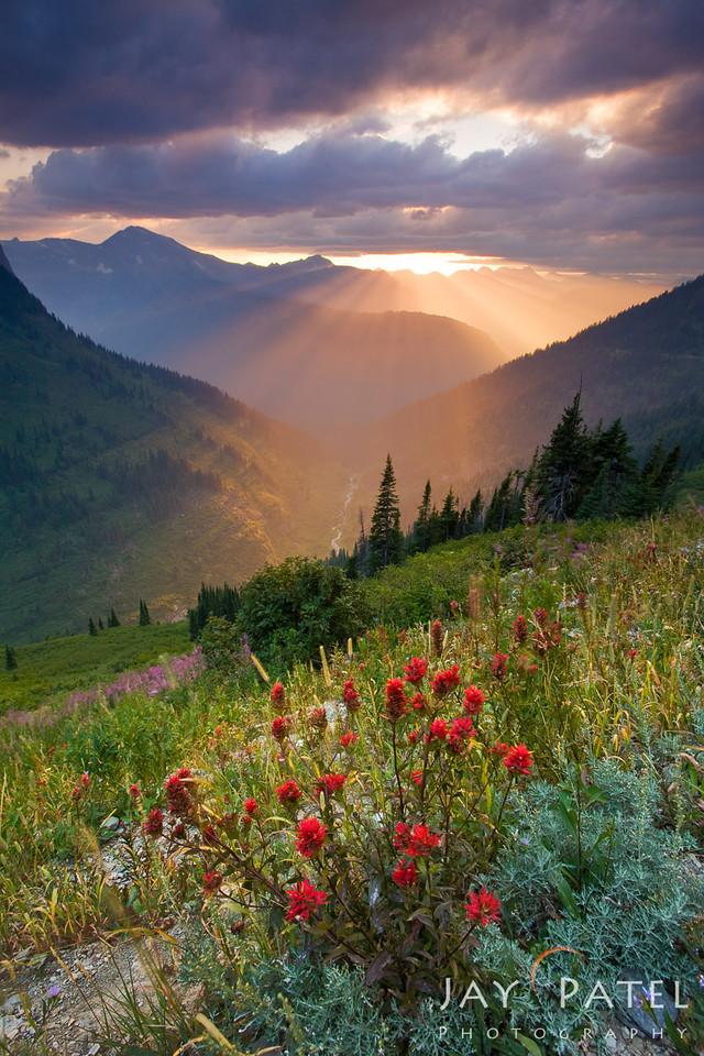 Going to Sun Road, Glacier National Park, Montana (MT), USA