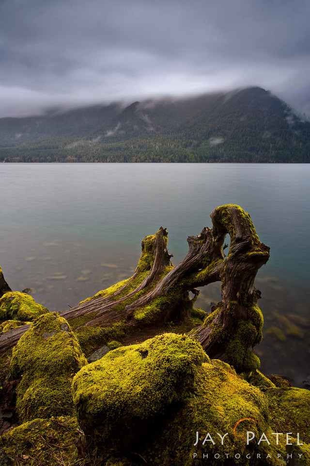 Lake Crescent, Olympic National Park; Washington (WA); USA