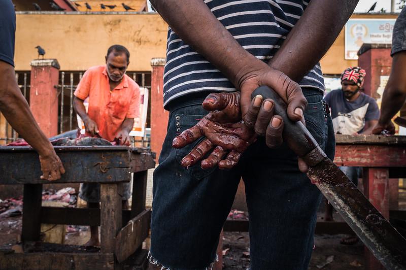 Negombo, Sri Lanka. 2019