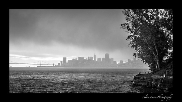 """Alcatraz View"""