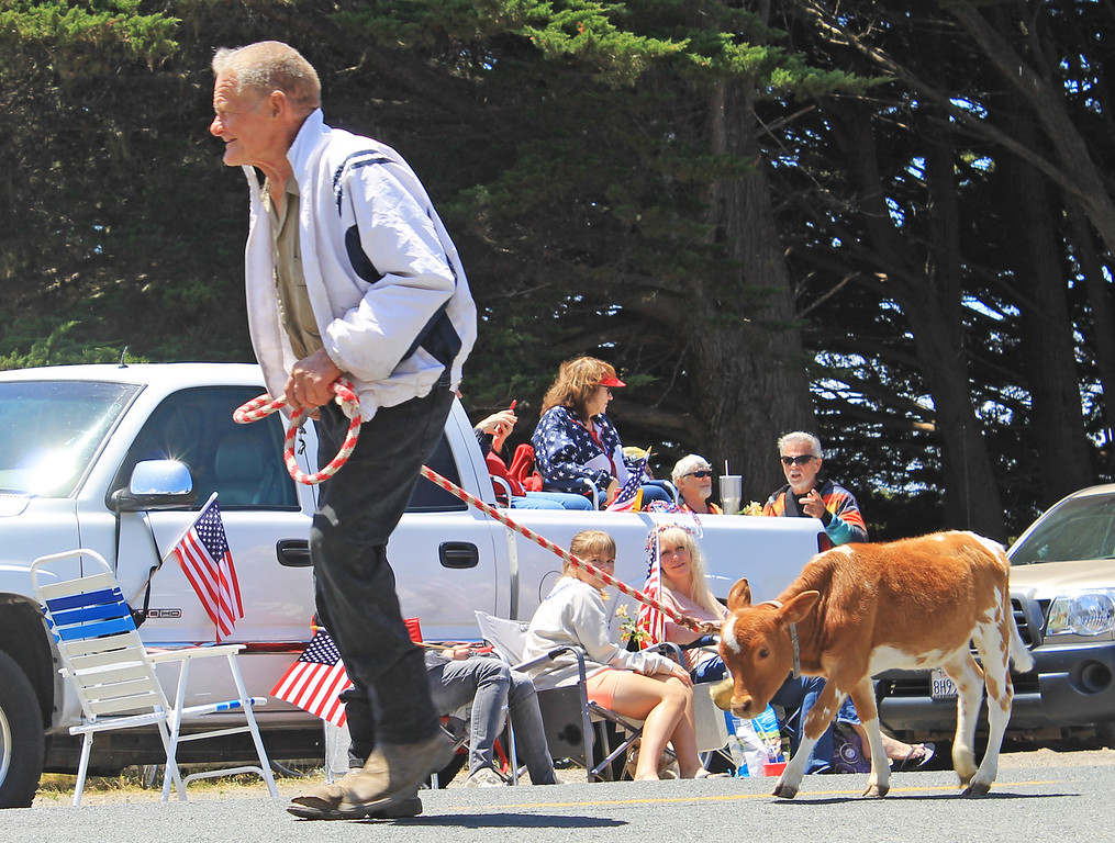 . Fred Sauers and this year\'s Independence Day calf.