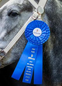 Blue Ribbon Winner
