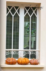 Three pumpkins on a window sill.