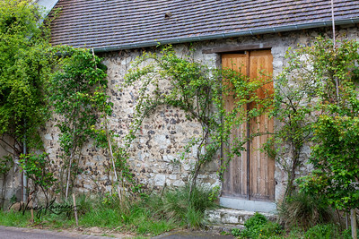 Europe, France, Giverny.  Wooden door and vine covered stone wall.