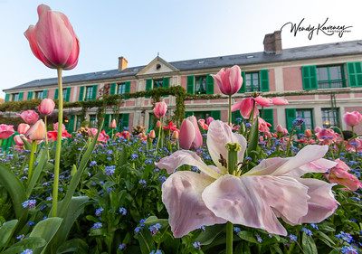 Low Angle View of Monet's House