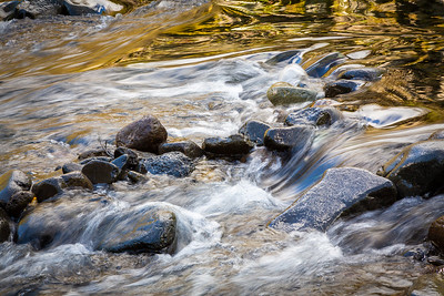 Mini Rapids on the Wilson River