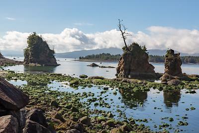 River Rocks at Low Tide