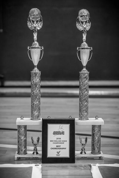 2-25-18_NGR_Dance Regionals - Awards-222