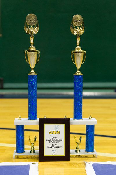 2-25-18_NGR_Dance Regionals - Awards-219