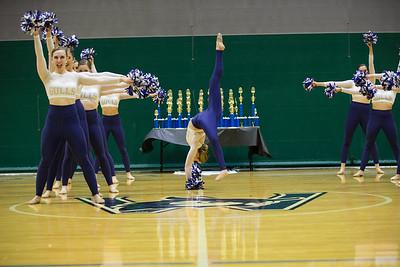 2-25-18_NGR_Dance Regionals - Pom-40