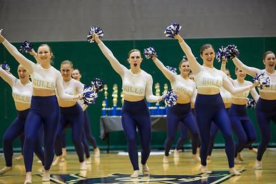 2-25-18_NGR_Dance Regionals - Pom-54