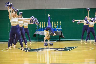 2-25-18_NGR_Dance Regionals - Pom-39