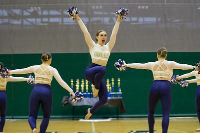 2-25-18_NGR_Dance Regionals - Pom-61