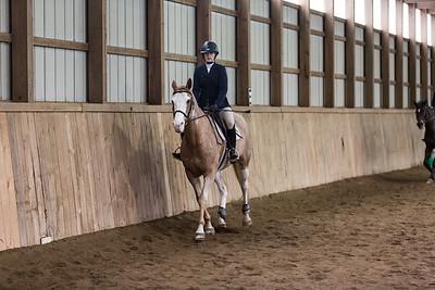 3-4-18_NGR_Endicott Horse Show-49
