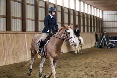 3-4-18_NGR_Endicott Horse Show-47