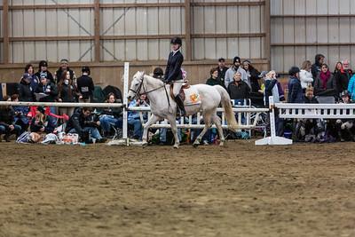 3-4-18_NGR_Endicott Horse Show-71
