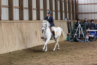 3-4-18_NGR_Endicott Horse Show-30