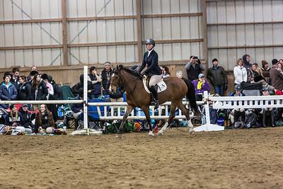 3-4-18_NGR_Endicott Horse Show-36
