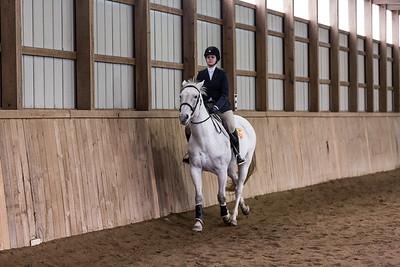 3-4-18_NGR_Endicott Horse Show-55