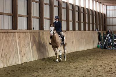 3-4-18_NGR_Endicott Horse Show-48