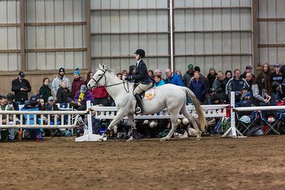 3-4-18_NGR_Endicott Horse Show-59