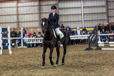 3-4-18_NGR_Endicott Horse Show-17