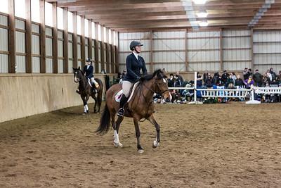 3-4-18_NGR_Endicott Horse Show-39