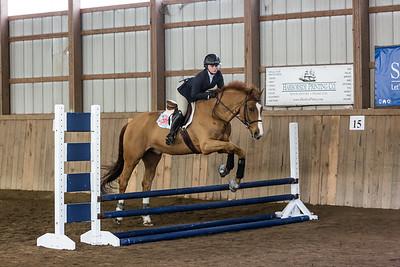 3-4-18_NGR_Endicott Horse Show-9