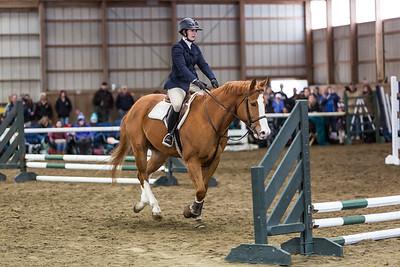 3-4-18_NGR_Endicott Horse Show-24