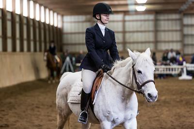 3-4-18_NGR_Endicott Horse Show-70
