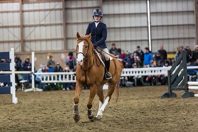 3-4-18_NGR_Endicott Horse Show-21