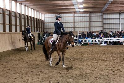 3-4-18_NGR_Endicott Horse Show-40