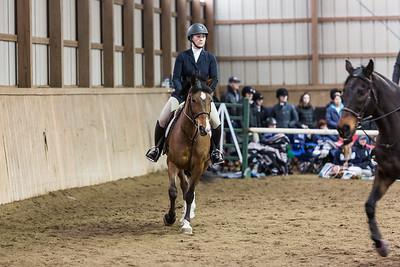 3-4-18_NGR_Endicott Horse Show-37