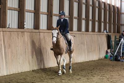 3-4-18_NGR_Endicott Horse Show-44